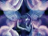 Transparent Angels