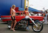 25. Cusom Car & Harley Show 2008