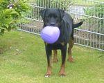 Cosma mit Luftballon