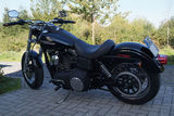 "Harley Street Bob ""Black & Beautiful"""