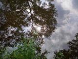 Blick in den Himmel?