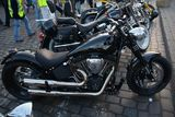 Hamburg Harley Days Softail