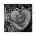 Holziges Herz